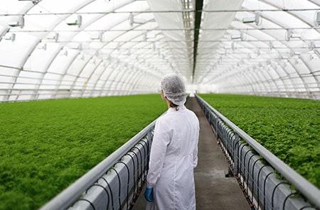กำจัดเชื้อโรคการเกษตร